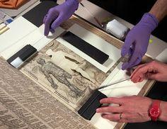 SOY BIBLIOTECARIO: Digitalizan un libro desplegable del siglo XVII