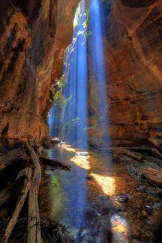Rocky Creek Canyon, Blue #Mountains / Australia #beautiful #nature madeheart.com