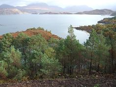 View from Shieldaig