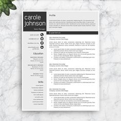 Resume Template Professional Resume Template For Word And Pages