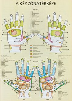 Click to close image, click and drag to move. Use arrow keys for next and previous. Cat Exercise, Foot Reflexology, Abdominal Pain, Health And Beauty Tips, Acupressure, Massage Therapy, Alternative Medicine, Close Image, Beauty Care