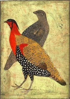 Two Pheasants, early 17th century, Mughal dynasty, Northern India.