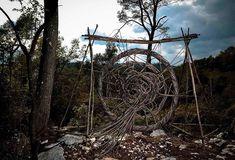 Une année à magnifier la forêt - Kaizen magazine