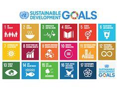 001 SDG Links Infographic Design Infographics Pinterest