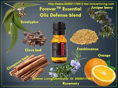 Learn more about Forever Living Products. Shop online and learn more about the Forever Business Opportunity. Forever Living Distributor, Health And Beauty, Health And Wellness, Juniper Berry Oil, Forever Living Business, Clove Bud, Forever Living Products, My Forever, Aloe Vera