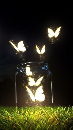 Fantasy Butterfly Jar Android Wallpaper iPhone X Wallpaper 114841859227545962 Scenery Wallpaper, Cute Wallpaper Backgrounds, Pretty Wallpapers, Colorful Wallpaper, Live Wallpapers, Screen Wallpaper, Mobile Wallpaper, Phone Backgrounds, Wallpaper Samsung