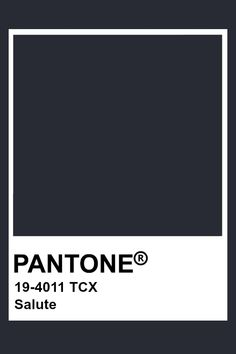 Pantone Navy, Paleta Pantone, Pantone Swatches, Color Swatches, Pantone Colour Palettes, Pantone Color, Dark Color Palette, Dark Colors, Paint Color Schemes