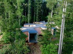 Florian Busch embeds branch-shaped holiday home in Japanese forest Forest Floor, Forest House, Shade Screen, Forest Pictures, Concrete Steps, Villa, Architectural Section, Timber House, Front Entrances
