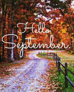Well, happy September 1 to YOU! Today is my very favorite day of the year.Well, happy September 1 to YOU! Today is my very favorite day of the year. Seasons Of The Year, Months In A Year, Seasons Months, Mix And Match Family, Mix Match, Happy September, October, Hello September Quotes, September Quotes Autumn