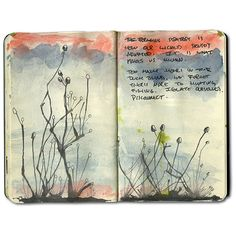 Amazon Jungle Moleskine Journal ❤ liked on Polyvore featuring books, fillers, notebooks, backgrounds, journals, doodle, magazine and scribble