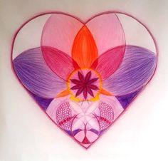 Růst srdce
