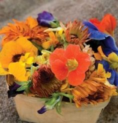 Edible Flower Mix of 12 Varieties 500 Seeds By Seeds and Things by Seeds and Things. $3.95. Dresses up a plate and makes any meal a very special occasion.. A variety mixture that's a beautiful garnish and a sweet to peppery savory. Annuals and Perennials. Fun for Kids Gardens. Mix Includes: Fragrant, colorful and flavorful addition to the garden, the Edible Flower Mixture includes: Borage, with a cucumber-like flavor; Cilantro, with its tangy, fresh flavor and aroma; Nasturium, ...