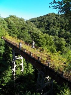 Too bad there's no mention of a location for this abandoned railroad bridge. Abandoned Train, Abandoned Mansions, Abandoned Buildings, Abandoned Places, Abandoned Castles, Two Worlds, Haunted Places, Train Tracks, Ghost Towns
