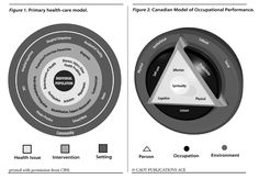 Canadian Model Of Occupational Performance & Primary Health-care Model
