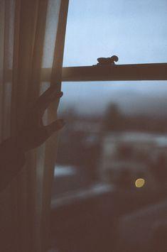 Early Morning Light | Adventure