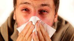 Pesquisa explica por que muita testosterona enfraquece o sistema imunológico - Blog do Erico