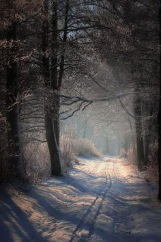 The mystery of snow...