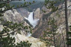 Lower Yellowstone Falls, Yellowstone National Park, WY