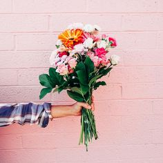 [I love the pink-painted brick.  I like the flowers too, but I think I would choose something other than the yellow-and-orange one.  If I were looking for contrast and excitement, I might add a red.]