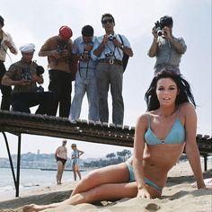 1ere apparition en starlette d'#AnnyDuperey au 21ème #festivaldeCannes en #1968 à 20 ans. Elle a un petit rôle dans un film en compétition de #RogerVadim, mais si petit qu'elle n'apparaît même pas au générique, et comble de malchance le film sera projeté dans l'inattention général deux jours avant l'interruption du festival par les cinéastes émeutiers. Elle fera son retour à #Cannes 6 ans plus tard, en haut de l'affiche de #Stavisky de #AlainResnais . Photo : Jack Garofalo
