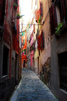 Narrow streets of Piran, Slovenia. I've been to Slovenia and been down an alleyway similar to this!