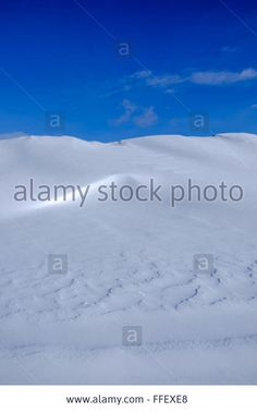 Download this stock image: Snow dunes, light and shadows, winter, blue sky, landscape. Calm, peaceful, quiet, still scene. - FFEXE8 from Alamy's library of millions of high resolution stock photos, illustrations and vectors. Photos For Sale, Stock Photos, Winter Blue, Sky Landscape, Light And Shadow, Dune, Shadows, Vectors, Calm