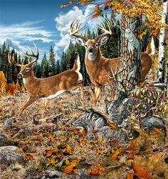 10 deers