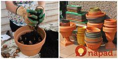 Už neriešim škvrny na pohovke ani zachnutú mastnotu na stoličkách: Zázrak na čalúnený nábytok – minútka a všetko len žiari! Garden Design, Planter Pots, Dali, Pergola, Creative, Flowers, Balcony, Gardening, Amazing