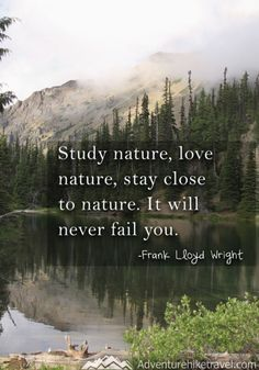 "Hiking and Nature Quotes and sayings: ""Study nature, love nature, stay close to nature. It will never fail you."" -Frank Lloyd Wright - 15 Hiking Quotes to Inspire Adventure Now Quotes, Great Quotes, Quotes To Live By, Inspirational Quotes, Inspire Quotes, Rumor Quotes, Motivational Quotes, Mature Quotes, Time Quotes"