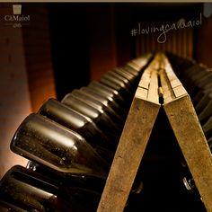 L'ampia cantina interrata, studiata per tutelare qualità e tipicità dei vini, rispetta appieno le fasi naturali di un percorso produttivo rimasto immutato nel tempo e saldamente legato alla sua storia familiare. #lovingcamaiol