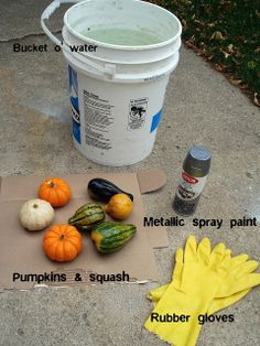 "--This is more like it! 10 minute project + drying time.-- Silver Boxes: ""Gilded"" Pumpkins & Squash Tutorial"