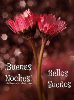 ¡Buenas Noches! Bellos Sueños @trazosenelcorazon