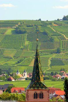Toit polychrome sur fond de vignobles - Turckheim, Haut-Rhin (France) - Crédit Photo : Hecht