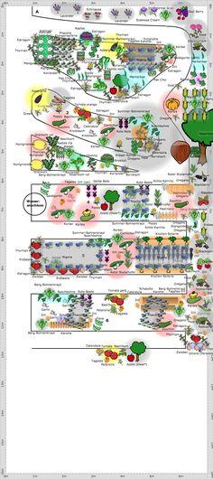 2 Acre Homestead Ideas | 20 Acre Permaculture Farm | Things I like ...