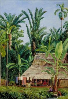 A Tailor's Shop in the Botanic Garden, Buitenzorg, Shaded by Sago Palms and…