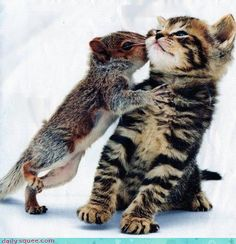 Eww squirrel cooties!