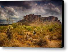 A Day At The Superstitions  Canvas Print / Canvas Art By Saija  Lehtonen