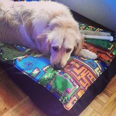 CUSTOM Geek Dog Bed Duvet by GoFollowRabbits on Etsy