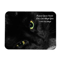 Pet Adoption Rescue Your Heart Adopt a Black Cat Magnet