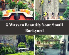 To make your backyard beautiful, it doesn't need to be big. Even in small area you can beautify your backyard. #small  #backyard #ideas #landscape #design