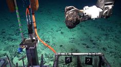 Are we prepared to damage the deep ocean to get the metals needed for advanced solar panels?