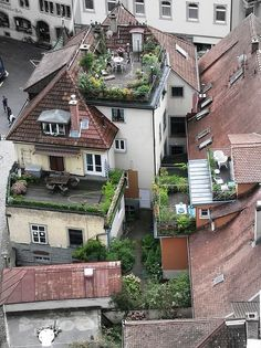 urban gardens from a bird's eye view. How much do you want to have a glass of wine on one of these