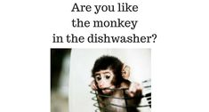 I just heard this story about a woman with a monkey.  She finished loading the dishwasher and cleaning up the kitchen...  All of a sudden they started hearing some really strange sounds.  You guessed it...  The monkey was stuck in the dishwasher.  And he was screaming bloody murder.  Thank heavens the dishwasher wasn't running.  I bet you've experienced it.  Ever felt just like that monkey?  You've been screaming at the top of your lungs...  And no one's listening.