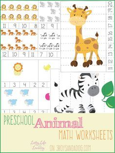 Preschool Animal Math Worksheets