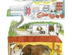 Lihan reitti, kuvittaja Heli Pukki Toy Chest, Education, Food, Decor, Decoration, Essen, Meals, Onderwijs, Decorating