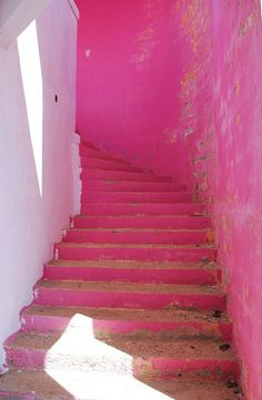 step into the pink
