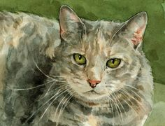 Dog and Cat Commissions by david scheirer, via Behance