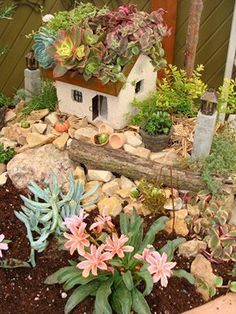 Arlena Schott of Garden Wise living created this Miniature Garden using the Tabby House from Jeremie Corp at Winter green House in Winter Wisconsin while on the Magical Miniature Garden Workshop Tour 2013 ©