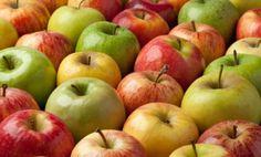 Apple cider Vinegar  http://www.care2.com/greenliving/40-uses-for-apple-cider-vinegar.html
