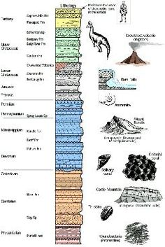 The Earth's Geologic Time Scale Eons Eras Periods Epoch Life ...